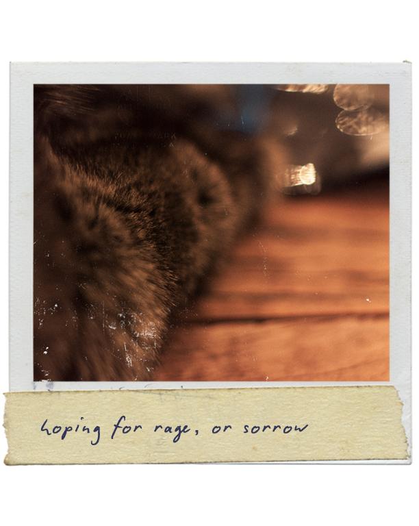 hopingforrageorsorrow